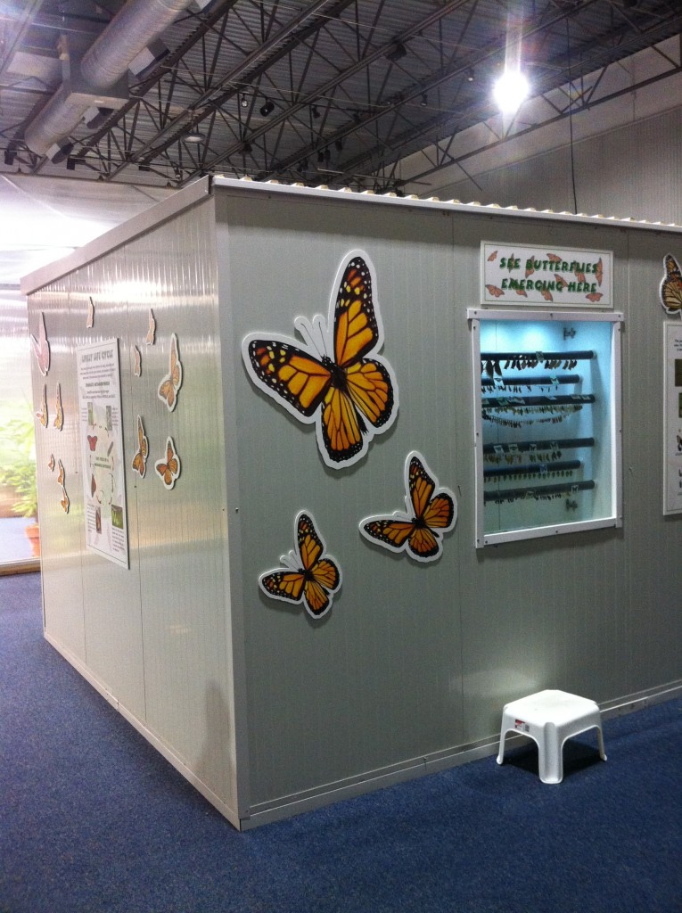 Butterflies Alive Exhibit